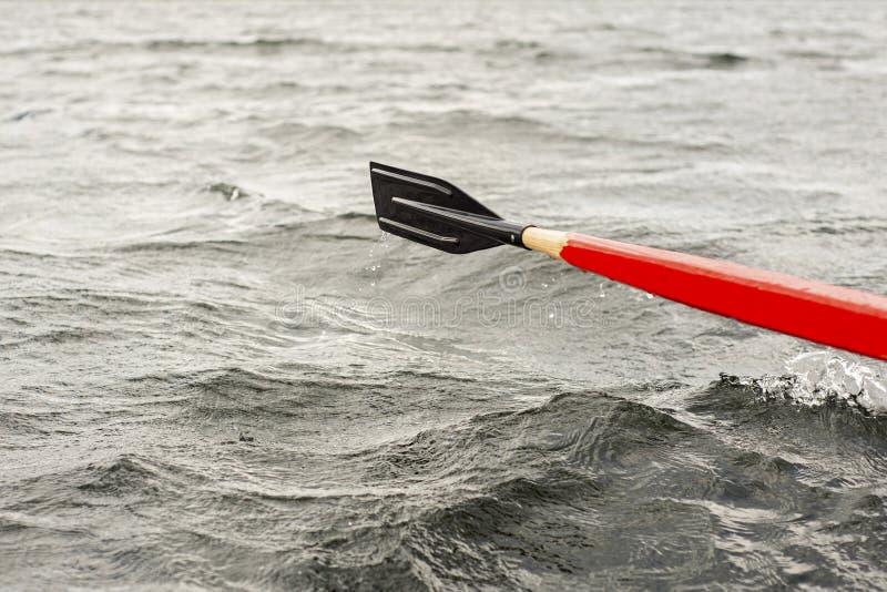 Imbarcazione a remi di legno rossa e nera della pagaia nel lago fotografia stock libera da diritti