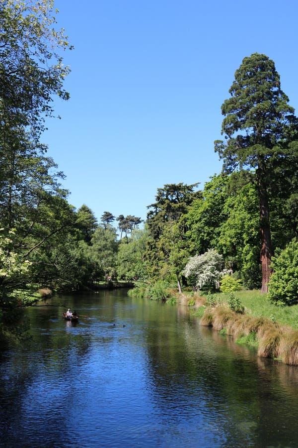 Imbarcazione a remi, fiume di Avon, Christchurch, Nuova Zelanda fotografia stock