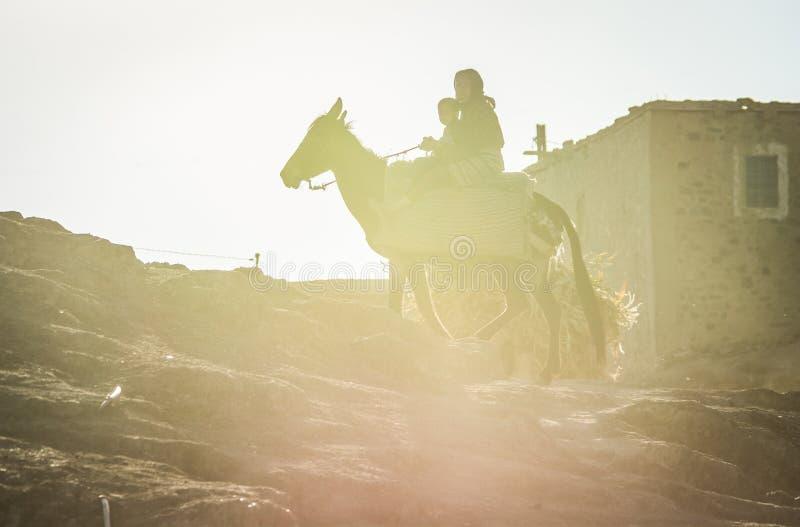 Imilchil Marocko - Oktober 05, 2013 Berberkvinna med barnet som rider hästen i solnedgång arkivfoton