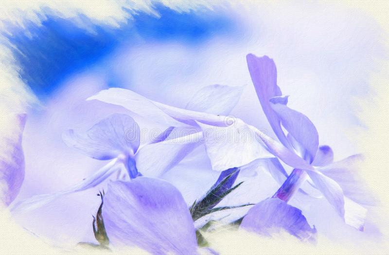 Imitation of the picture.looming the wild blue phlox, or woodland phlox, or wild sweet william royalty free illustration