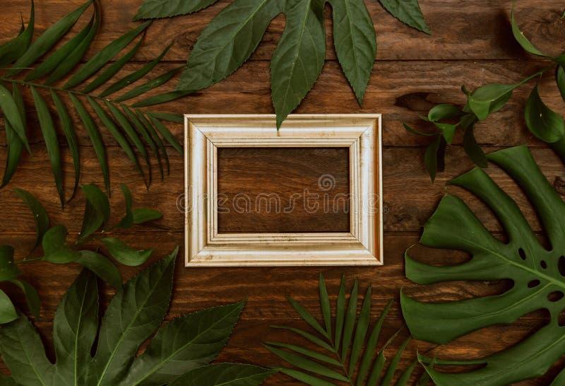 Imite encima del capítulo de hojas tropicales en fondo de madera con el espacio para el texto fotos de archivo libres de regalías