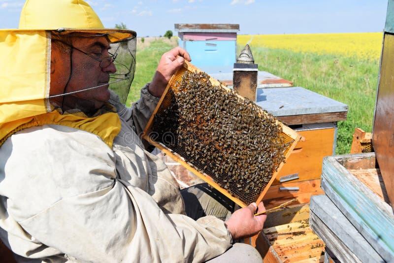 Imker en zijn mobiele bijenkorven royalty-vrije stock foto's