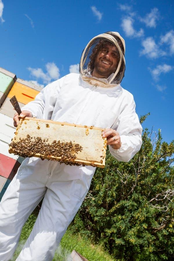 Imker Holding Honeycomb Frame am Bienenhaus lizenzfreie stockfotos