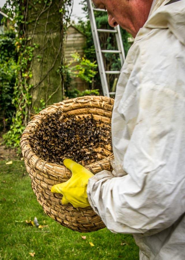Imker met een bijenkorf met een bijenkolonie stock afbeeldingen