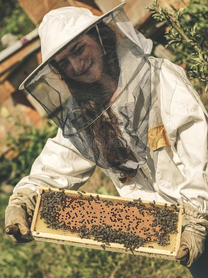 Imker und Bienen stockfotografie