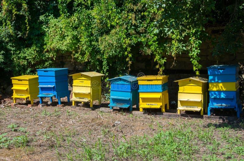 imkerij Bijenbijenkorven in de tuin stock foto