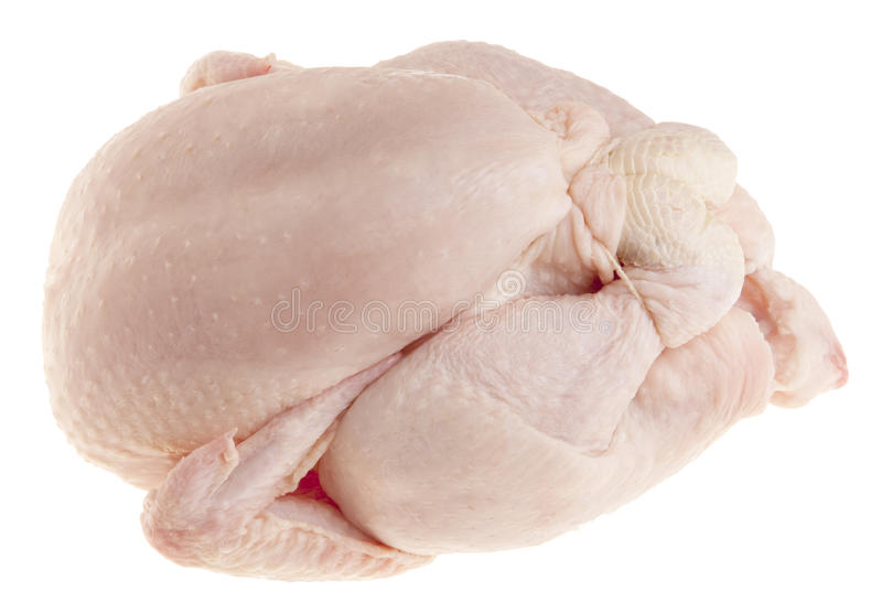 Immaculate broiler raw chicken royalty free stock photos
