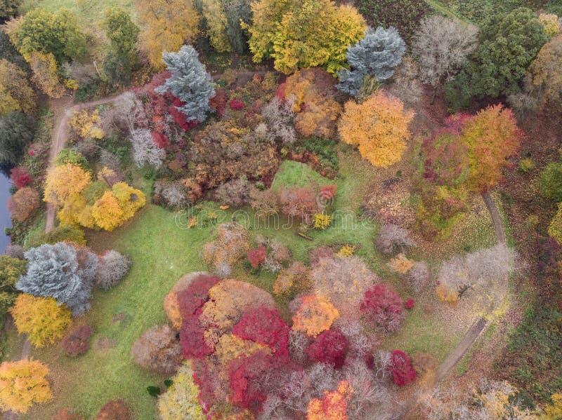 Immagine aerea del paesaggio del fuco di stordimento del paesaggio vibrante variopinto sbalorditivo della campagna di Autumn Fall fotografie stock libere da diritti