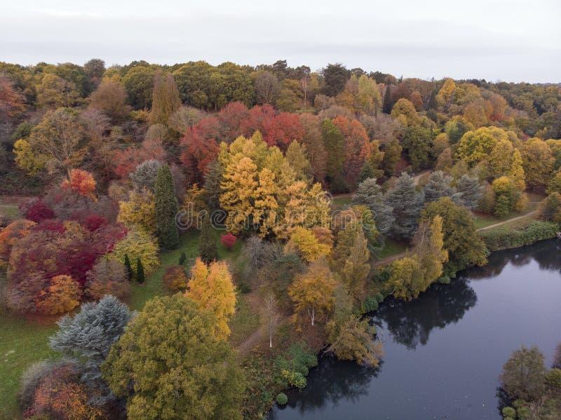 Immagine aerea del paesaggio del fuco di stordimento del paesaggio vibrante variopinto sbalorditivo della campagna di Autumn Fall fotografia stock libera da diritti