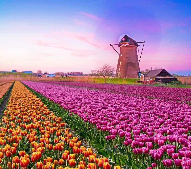 Immagine affascinante magica di bei mulini a vento che filano nel immagini stock libere da diritti