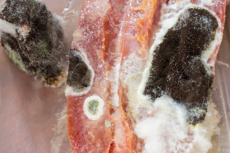 Immagine alta vicina del fungo in bianco e nero in frutta immagine stock