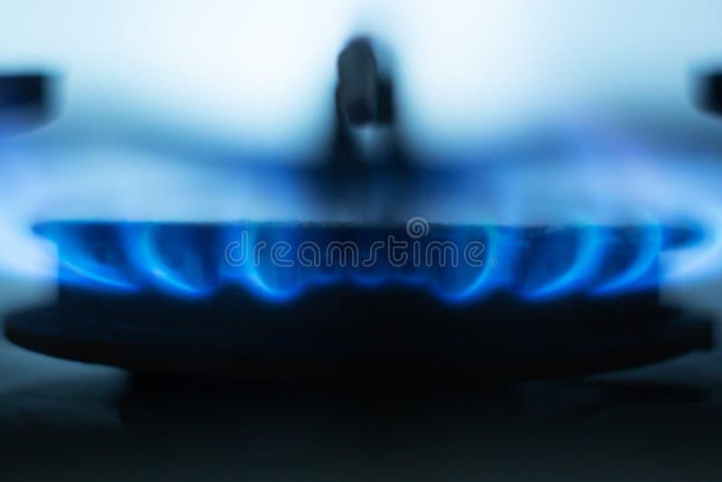 Immagine alta vicina della combustione della fresa del gas, fiamme blu luminose situata intorno al giro speciale metallico in for immagine stock