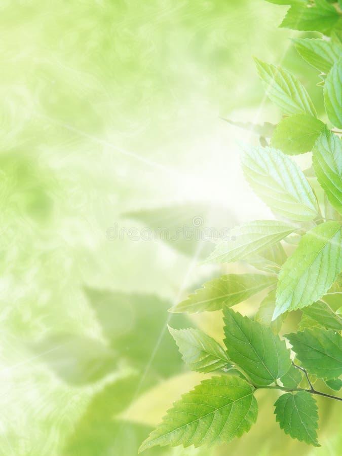 Immagine ambientale immagine stock libera da diritti