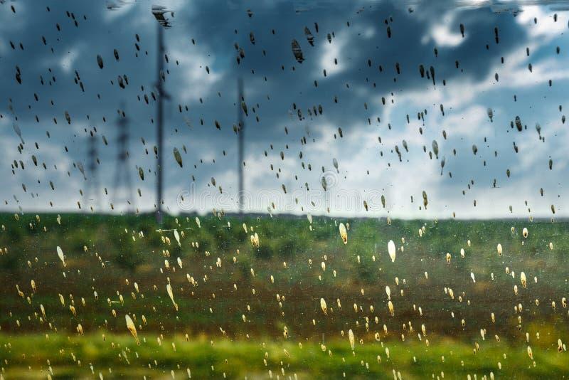 Immagine astratta delle gocce di pioggia sporche sul concetto di vetro di ecologia di problemi dell'inquinamento ambientale fotografie stock