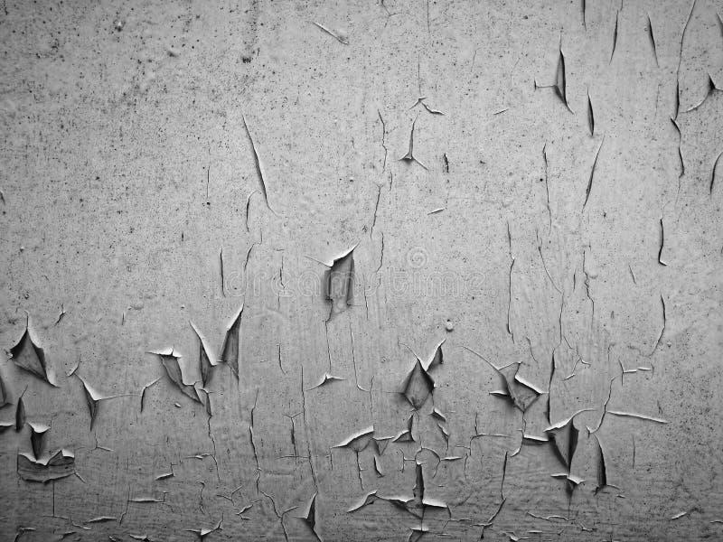 Immagine in bianco e nero artistica di vecchio rivestimento fotografia stock libera da diritti