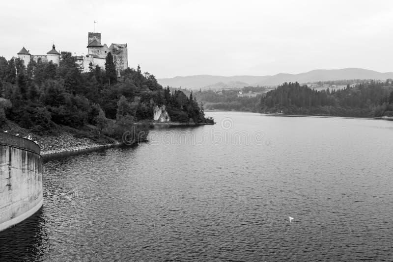 Immagine in bianco e nero del villaggio scenico di lungomare immagine stock libera da diritti