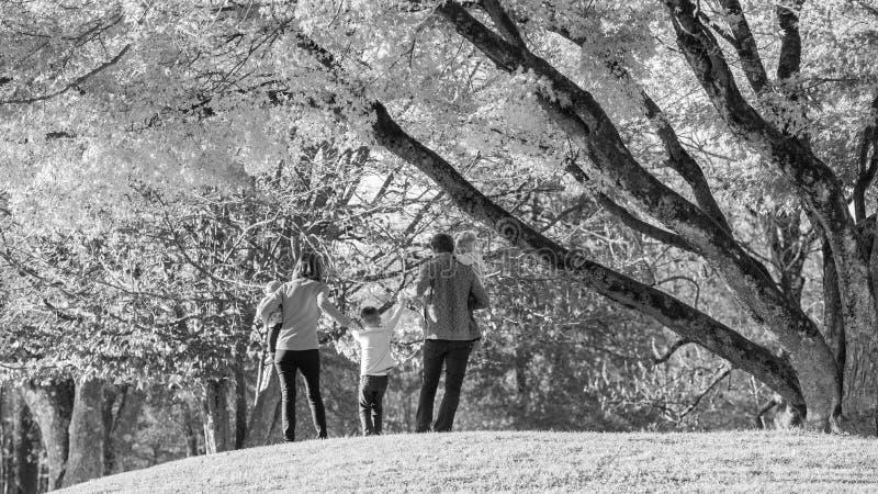 Immagine in bianco e nero di una famiglia di tempo godente cinque insieme in un parco fotografie stock libere da diritti