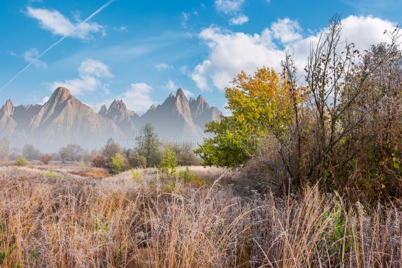 Immagine composita del giorno gelido tardo di autunno illustrazione vettoriale