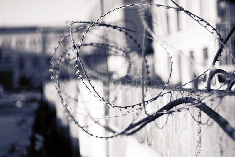 Immagine concettuale in bianco e nero di un filo spinato fotografia stock libera da diritti