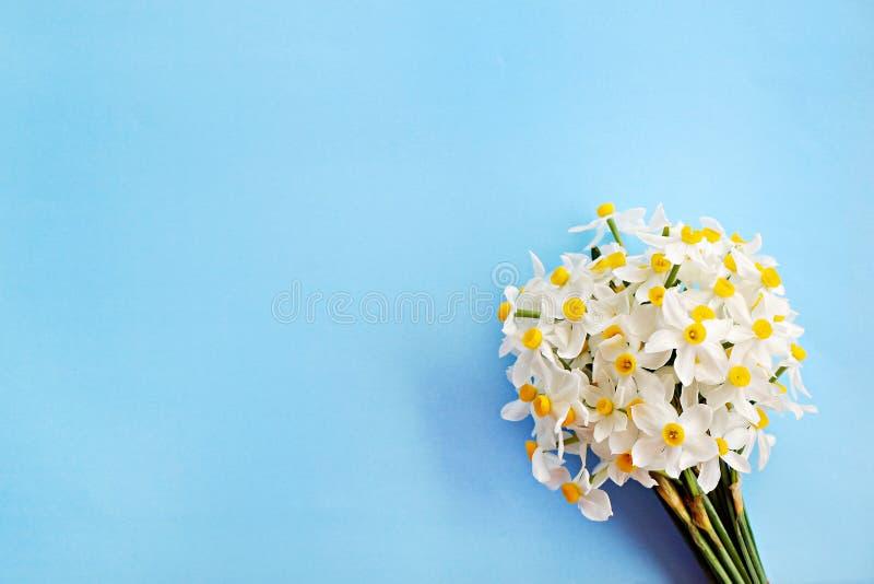 Immagine concettuale di umore della primavera Fiori stagionali su fondo luminoso immagini stock