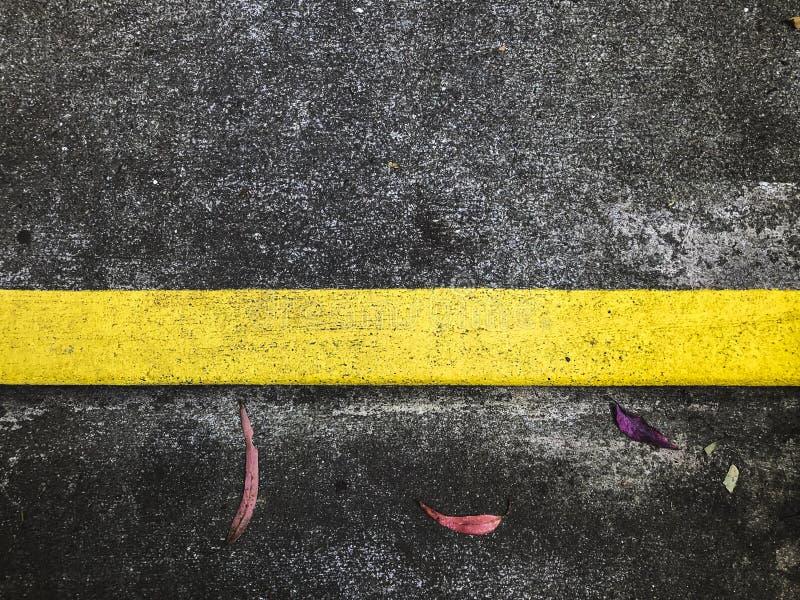 Immagine concreta con giallo solido dentro e le foglie immagini stock