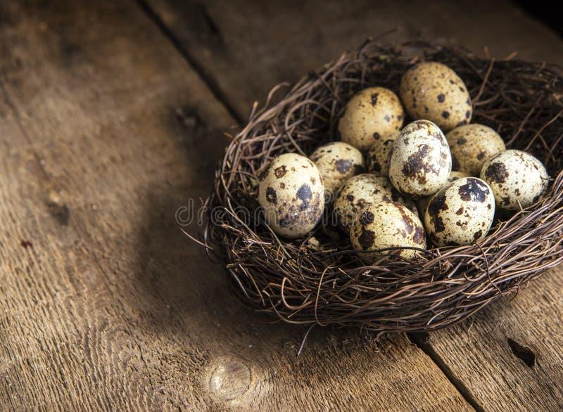 Download Immagine D'annata Lunatica Di Stile Di Illuminazione Naturale La Retro Dei Quaills Eggs Fotografia Stock - Immagine di fresco, piastra: 55362522