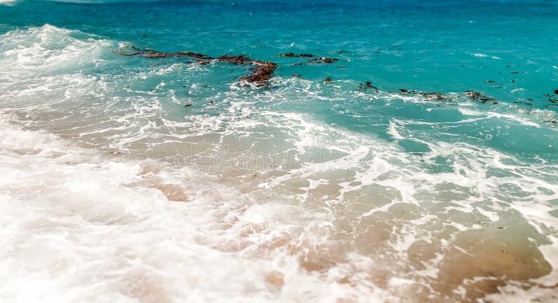 Immagine dei lotti delle macchie dei detriti, di gardbage, della plastica e di olio che galleggiano sulla superficie del mare Con fotografia stock libera da diritti