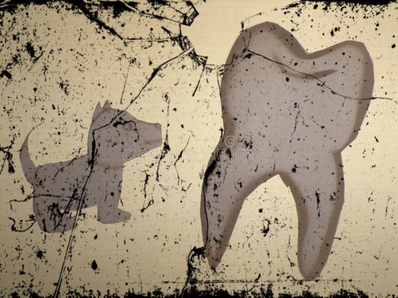 Immagine del cane davanti all'immagine del dente fotografie stock