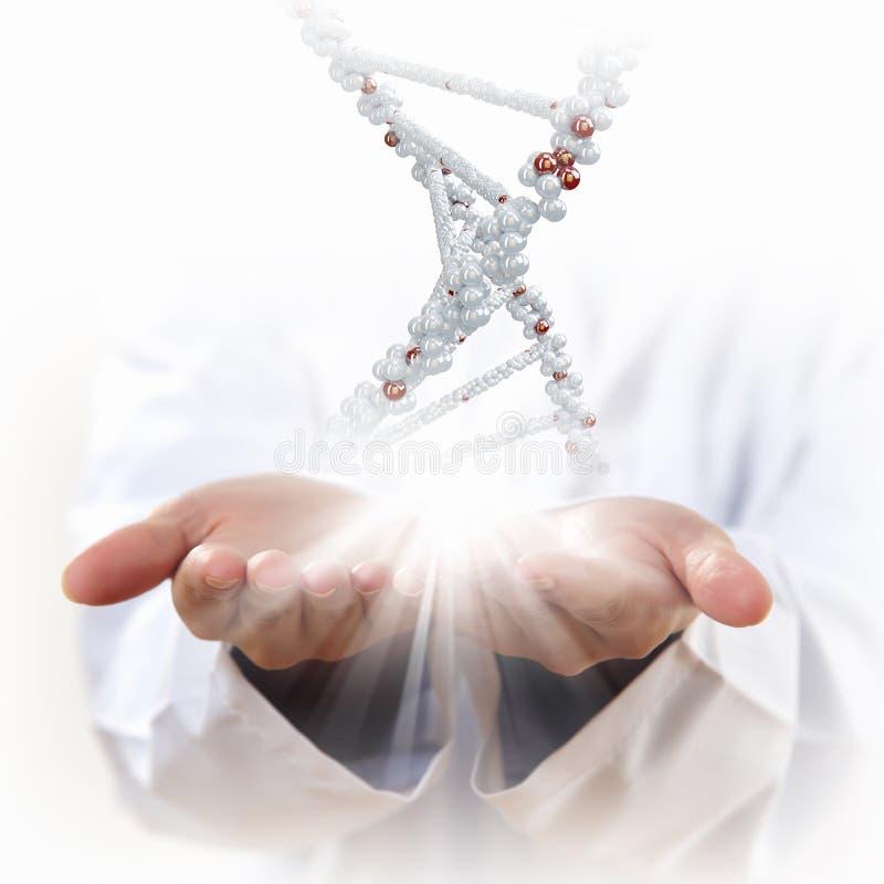 Immagine del filo del DNA fotografia stock libera da diritti