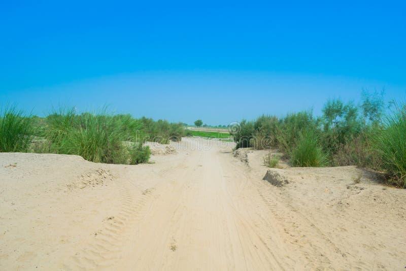 Immagine del paesaggio di un'area del deserto nel Punjab, Pakistan immagine stock libera da diritti
