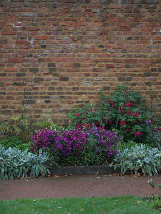 Immagine del ritratto della parete del giardino con l'aiola e del percorso in priorità alta fotografia stock