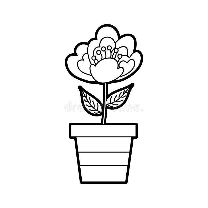 Immagine delicata della fioritura della ciliegia della natura conservata in vaso del fiore illustrazione vettoriale