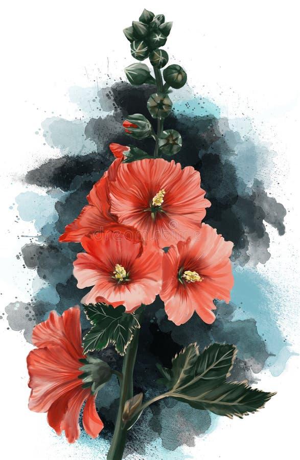 Immagine dell'acquerello di una pianta disegnata a mano delle malvarosa immagine stock