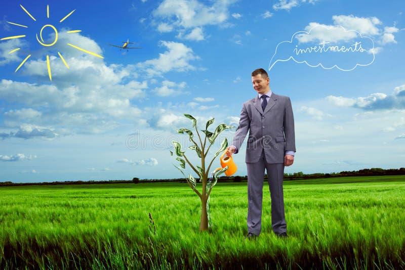Immagine dell'albero d'innaffiatura dei soldi dell'uomo d'affari fotografia stock