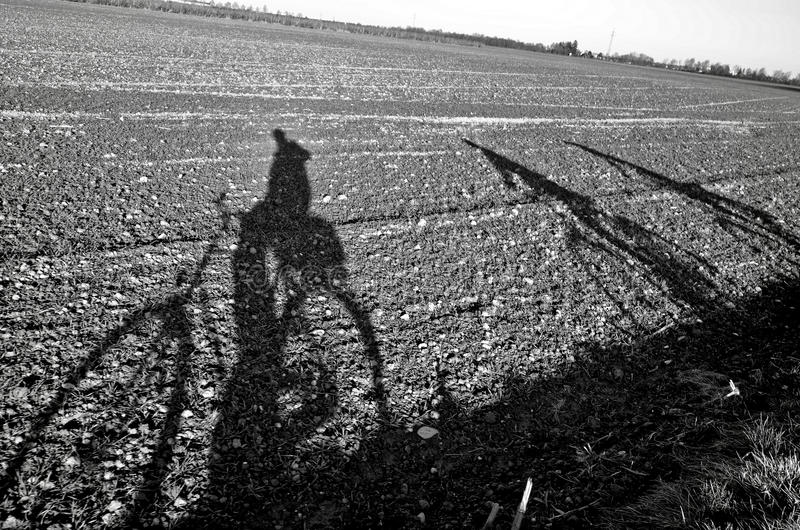 Immagine dell'ombra del ciclista immagini stock libere da diritti
