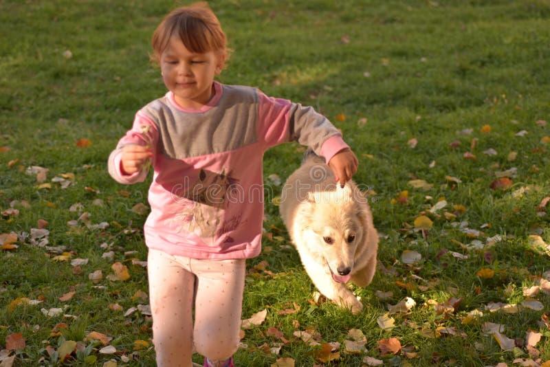 Immagine della bambina che corre felicemente sul prato verde con il piccolo cucciolo bianco che segue dietro immagini stock libere da diritti