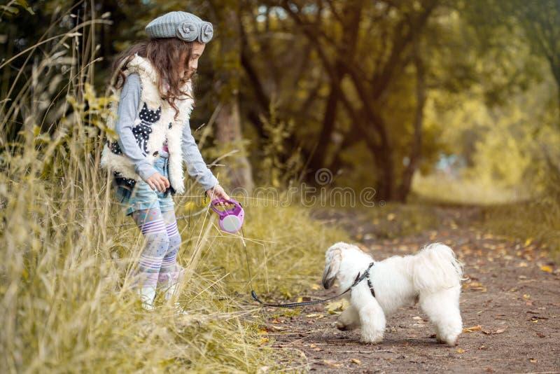 Immagine della bambina graziosa che gioca con il cane sveglio fotografie stock