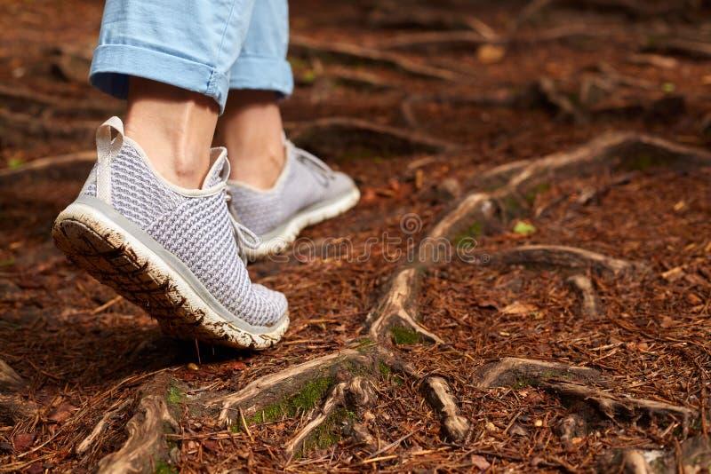 Immagine della donna che porta le scarpe da tennis grige ed i pantaloni blu che camminano da solo nell'abetaia su terra, godendo  fotografie stock libere da diritti