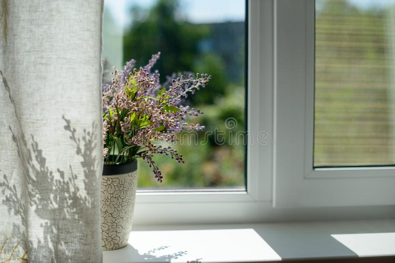 Immagine della finestra con un fiore in un vaso ed in una tenda nella stanza fotografia stock
