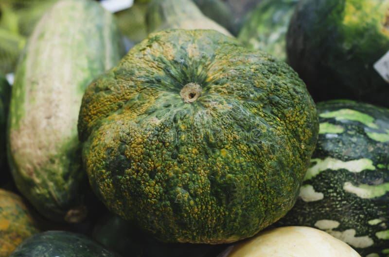 Immagine della zucca o del auyama brutto verde fotografia stock