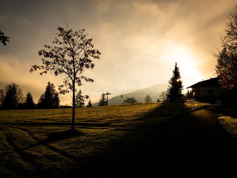 Immagine delle siluette dell'ascensore e degli alberi di sci durante l'alba nel primo mattino immagine stock libera da diritti