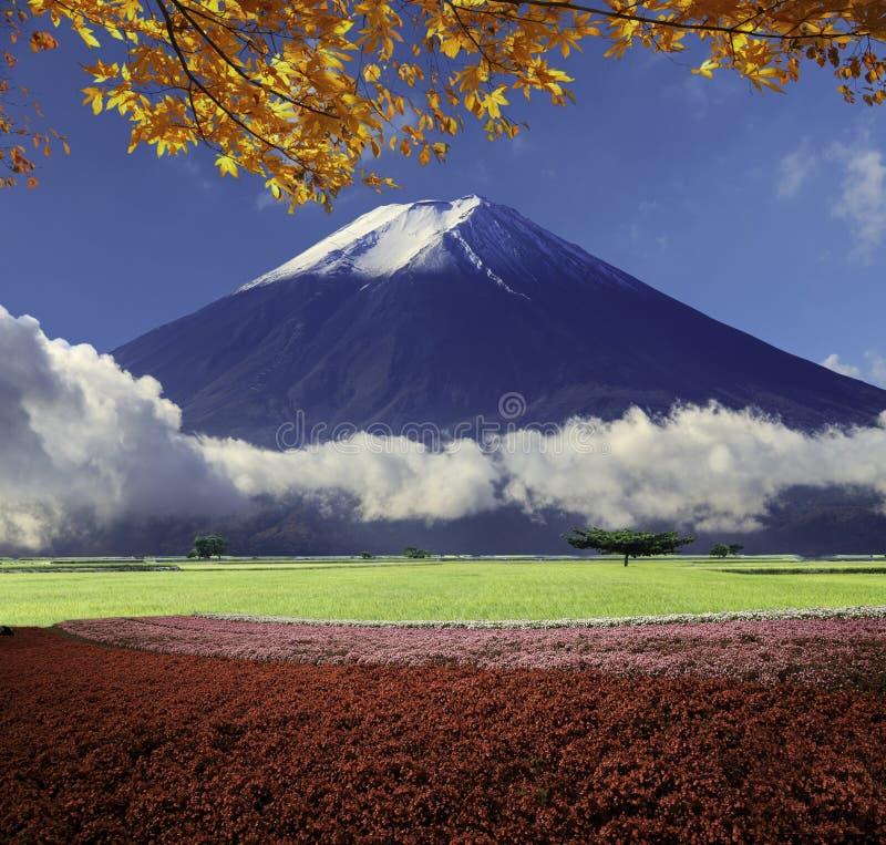 Immagine di bei paesaggi con colore e backgroun molto piacevoli immagine stock libera da diritti