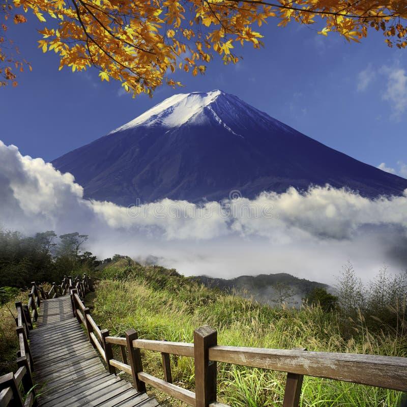 Immagine di bei paesaggi con colore e backgroun molto piacevoli immagini stock