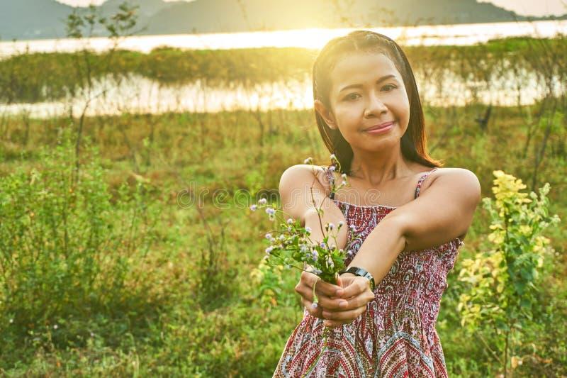 Immagine di bella donna asiatica fotografia stock
