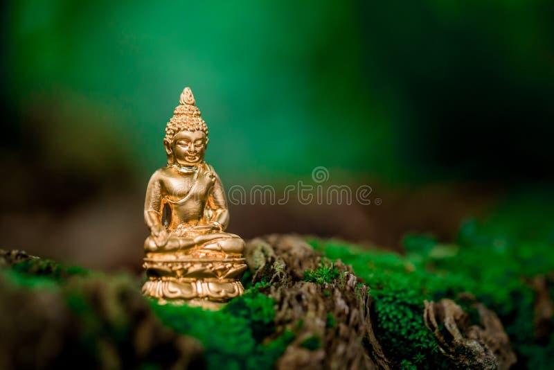 Immagine di Buddha immagini stock libere da diritti