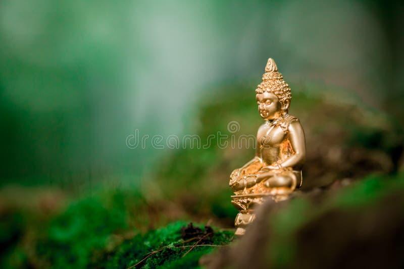 Immagine di Buddha fotografie stock