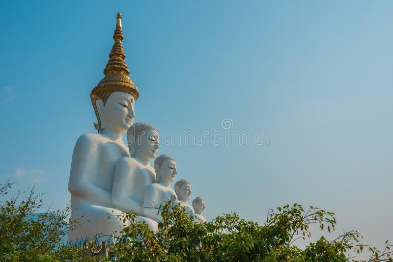 Immagine di cinque Buddha fotografia stock