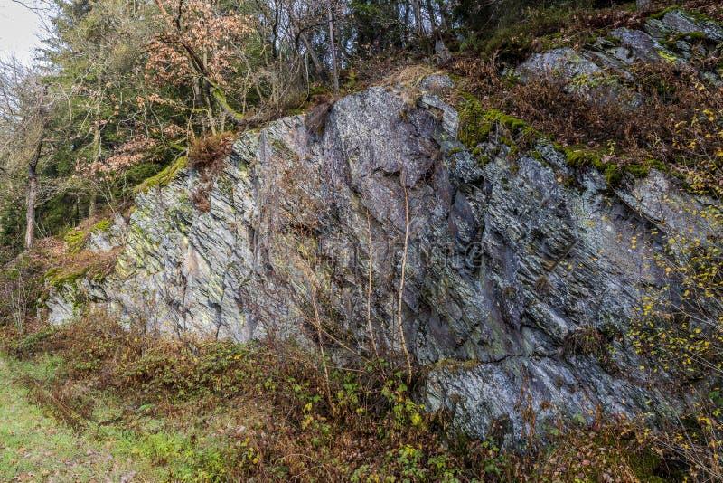 Immagine di grande roccia dell'ardesia nel legno fotografia stock