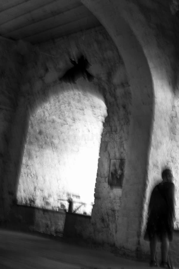 Immagine di mosso surreale della condizione irriconoscibile della donna in una vecchia stanza con un volo del corvo fotografia stock libera da diritti