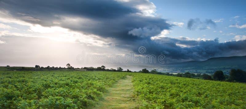 Immagine di paesaggio della campagna alle montagne